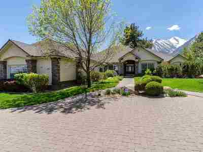 Gardnerville Single Family Home For Sale: 217 Sierra Country Cir
