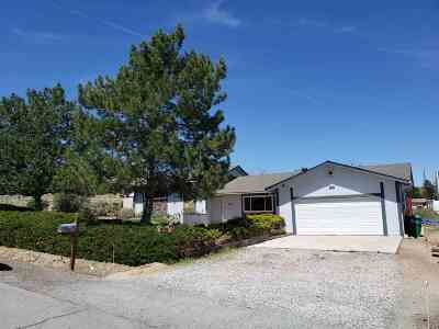 Reno Single Family Home For Sale: 10350 Wells Fargo Rd