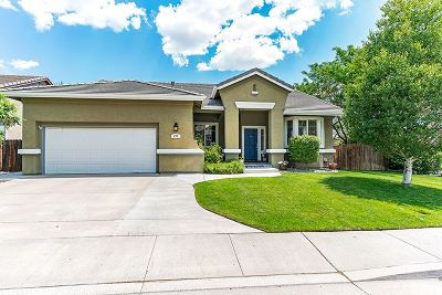 Reno Single Family Home For Sale: 294 River Flow Dr