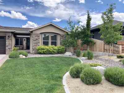 Carson City Single Family Home For Sale: 1657 Robb Drive