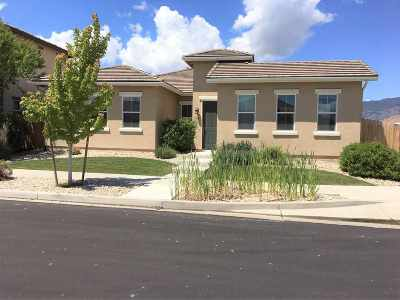 Minden NV Single Family Home For Sale: $449,900