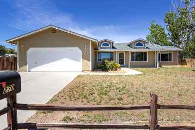 Carson City Single Family Home For Sale: 270 Clear Creek Ave