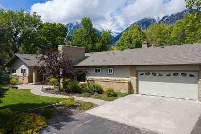 Gardnerville Single Family Home Active/Pending-Loan: 924 Bollen