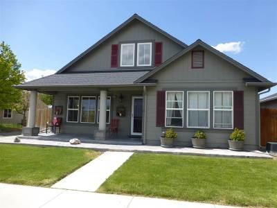 Gardnerville Single Family Home For Sale: 1402 Honey Locust