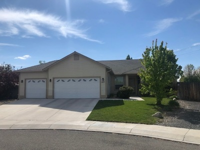 Gardnerville Single Family Home Active/Pending-Loan: 1437 Cardiff Dr.