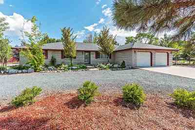 Carson City Single Family Home For Sale: 427 E Appion Way