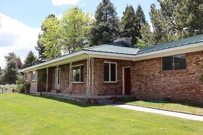 Washoe County Single Family Home For Sale: 75 Lonesome Polecat Lane