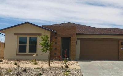 Fernley Single Family Home For Sale: 755 Palomino Dr