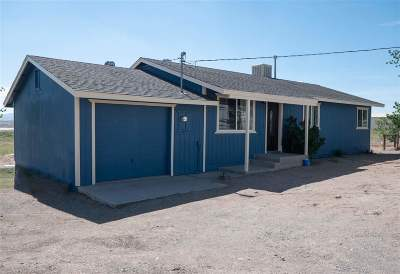 Yerington NV Single Family Home Active/Pending-Loan: $195,000