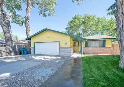 Carson City Single Family Home Price Reduced: 1363 E Fifth Street