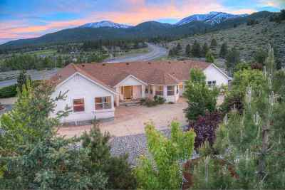 Reno Single Family Home For Sale: 16270 N Timberline