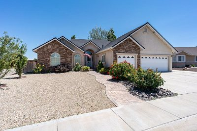 Fernley Single Family Home For Sale: 748 Divot Drive