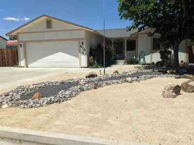 Fernley Single Family Home For Sale: 670 Concord
