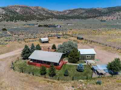 Washoe County Single Family Home For Sale: 22100 N Red Rock Road