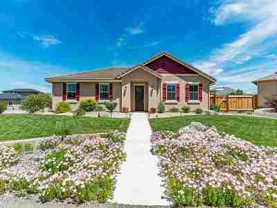 Minden NV Single Family Home For Sale: $449,000