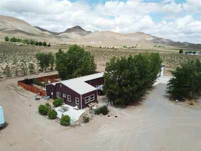Yerington NV Single Family Home For Sale: $445,000
