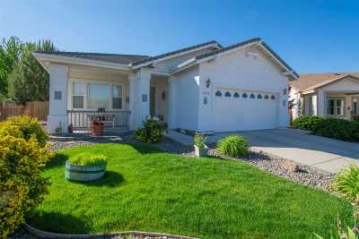 Minden NV Single Family Home For Sale: $439,900