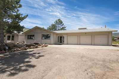 Reno Single Family Home For Sale: 155 Deer Mountain