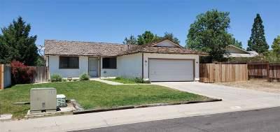 Gardnerville Single Family Home For Sale: 621 Joette Drive