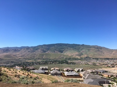 Sparks Single Family Home Active/Pending-Call: 3160 Rimini Dr #Homesite