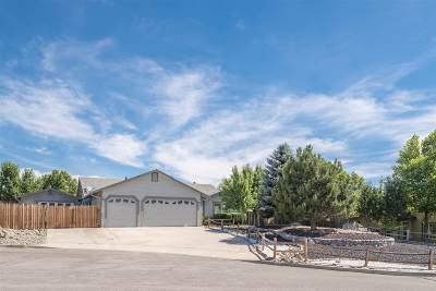 Sparks Single Family Home For Sale: 28 Cormorant Ct.