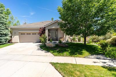 Washoe County Single Family Home For Sale: 7801 Morgan Pointe Circle