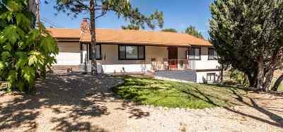Reno Single Family Home For Sale: 3065 Markridge Dr