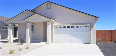 Fallon Single Family Home For Sale: 1384 Onda Verde