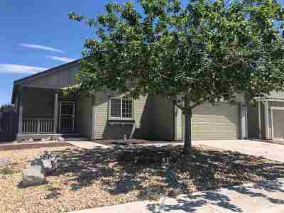 Fernley Single Family Home For Sale: 701 Canary