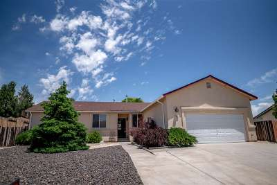 Reno Single Family Home New: 3967 Kettle Rock Drive