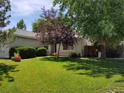 Fernley Single Family Home For Sale: 1563 Maria #Ct