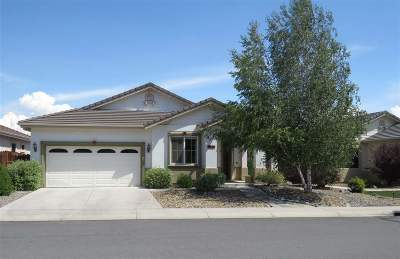 Minden NV Single Family Home For Sale: $439,000