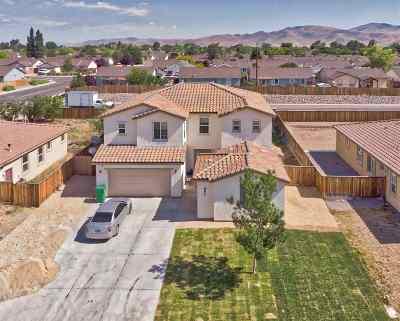 Fernley Single Family Home For Sale: 892 Jill Marie Lane