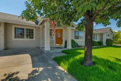 Gardnerville Single Family Home For Sale: 1226 Springtime