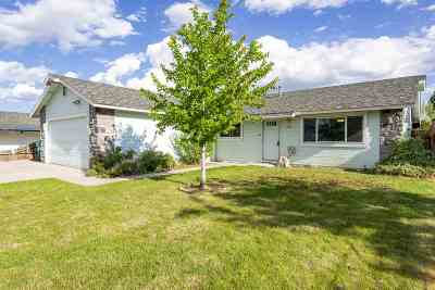 Carson City Single Family Home New: 1027 Lindsay Lane