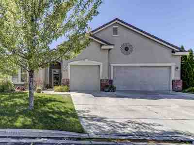 Reno Single Family Home New: 10423 Copper Wood Ct