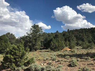 Reno Residential Lots & Land For Sale: 950 Globe Rd