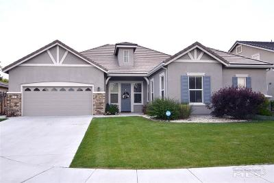 Washoe County Single Family Home Back On Market: 4341 Jacob Patrick Ct.