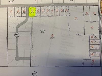 Yerington Residential Lots & Land New: Parcel 1 Mason Road