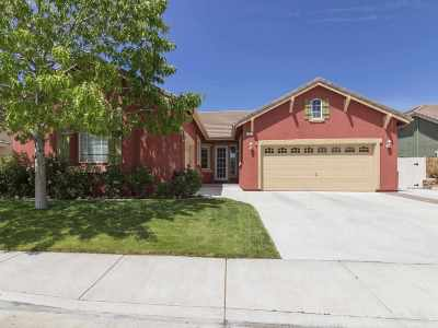 Washoe County Single Family Home New: 5227 Vidette Meadows Drive