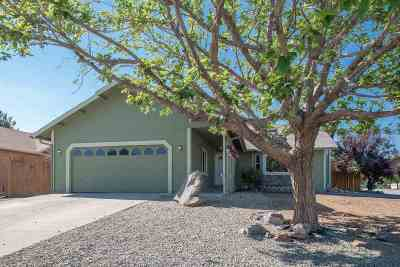 Sparks Single Family Home New: 219 Desert Rose