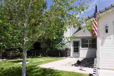 Washoe County Single Family Home New: 1616 Golddust