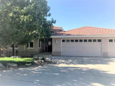 Washoe County Single Family Home For Sale: 3345 Meridian Lane
