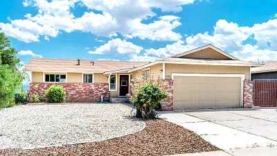 Washoe County Single Family Home New: 3210 Coronado Way