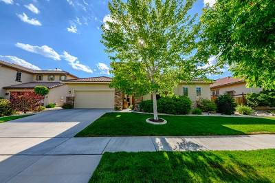Washoe County Single Family Home New: 4384 Clearwood