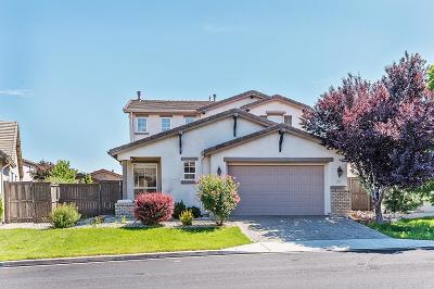 Washoe County Single Family Home New: 421 Alysheba Court