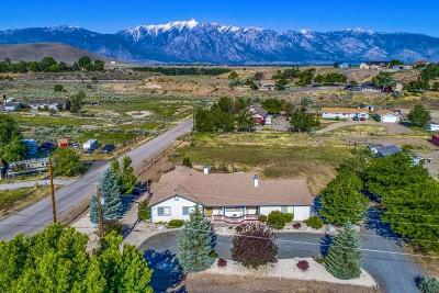 Gardnerville Single Family Home For Sale: 1840 Colt Lane