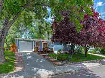 Reno Single Family Home New: 755 Stoker Ave