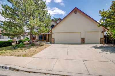 Carson City Single Family Home New: 2363 Diane Dr.