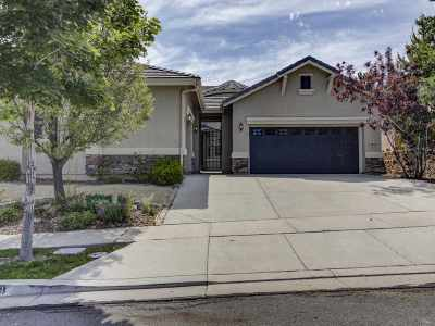 Washoe County Single Family Home New: 3279 Ten Mile Drive